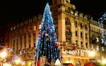 belgrade-christmas-market-tree1
